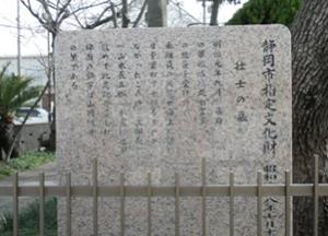 shizuoka100320_01.PNG