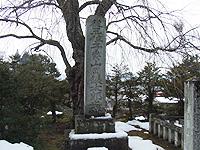 takayama090130_06.JPG